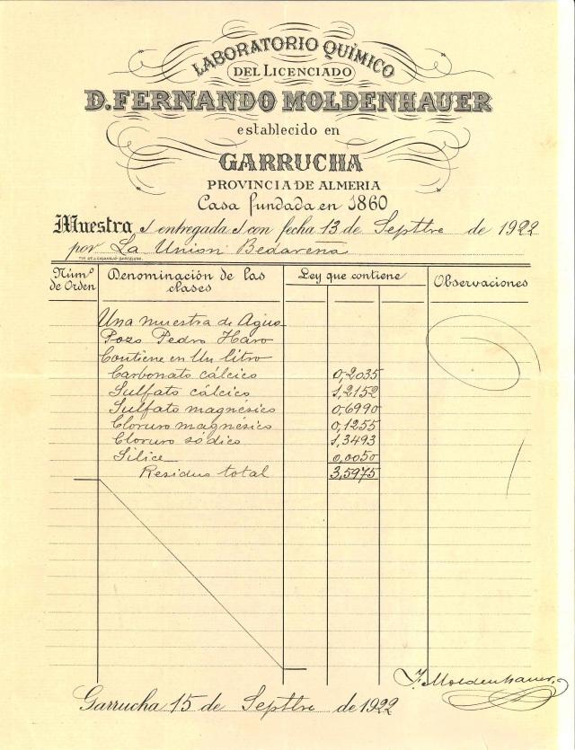 ANALISIS F. MOLDENHAUER.jpg