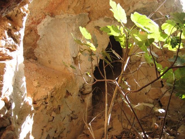 cueva4